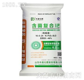 含菌复合肥16-6-24-中港化肥