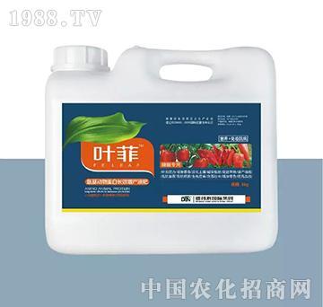 辣椒专用叶面肥-叶菲-