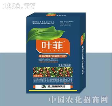 大枣专用叶面肥(盒装)-叶菲-德邦农