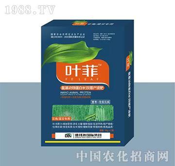豆角菜豆专用叶面肥(盒装)-叶菲-德邦农
