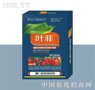 辣椒专用叶面肥(盒装)-叶菲-德邦农
