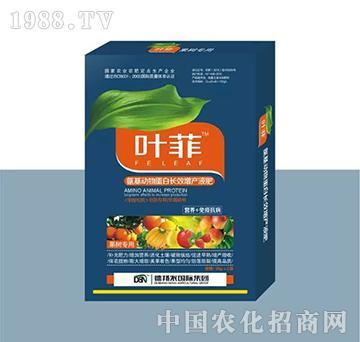 果树专用叶面肥(盒装)-叶菲-德邦农
