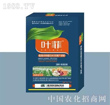 块根茎专用叶面肥(盒装)-叶菲-德邦农