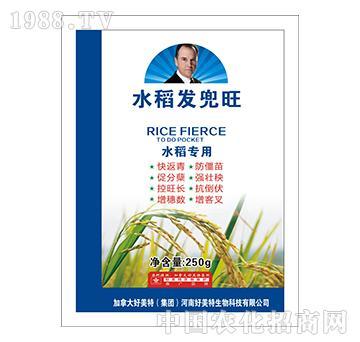 水稻发兜旺-好美特