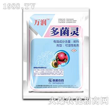 80%多菌灵可湿性粉剂