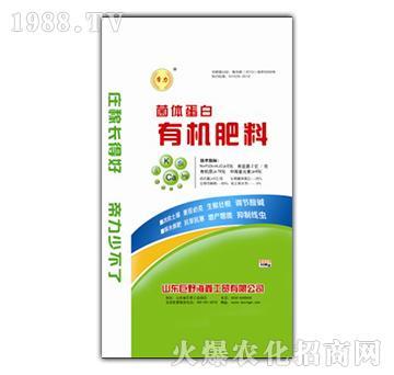 菌体蛋白有机肥料-海鑫
