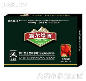 草莓专用叶面肥-霸尔绿博