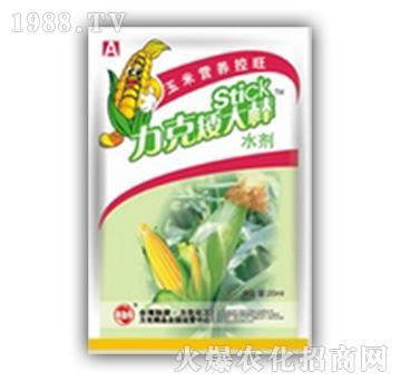 玉米营养控旺-矮大棒-