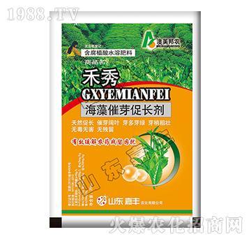 海藻催芽促长剂-禾秀-