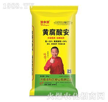 黄腐酸安-波利农