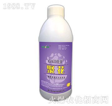 聚花-植物健康生长促进液(1000ml)-格兰克