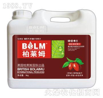 枣树专用营养新配方-柏