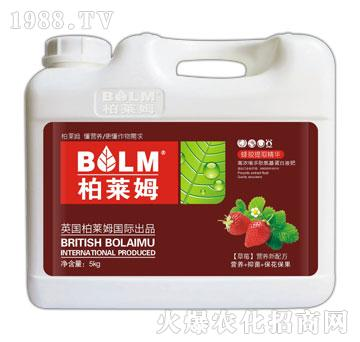 草莓专用营养新配方-柏