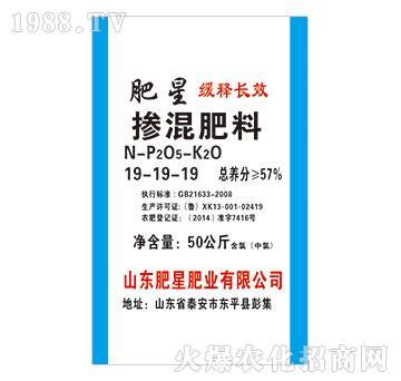 掺混肥料19-19-19-肥星肥业