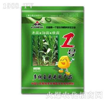 多株玉米专用菌剂-阿姆斯