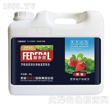 草莓多肽氨基蛋白冲施滴灌母液-稼多帮