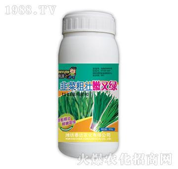 韭菜粗壮嫩又绿-泰达农化