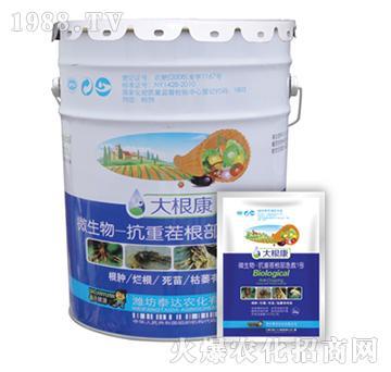 微生物菌抗重茬根部急救1号-大根康-泰达农化