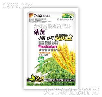 小麦铁杆麦黄金-劲茂-泰达农化