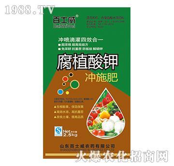 腐植酸钾冲施肥-百士威