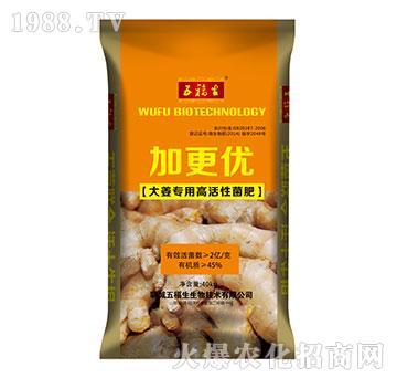 加更优-大姜专用高活性菌肥-五福生物