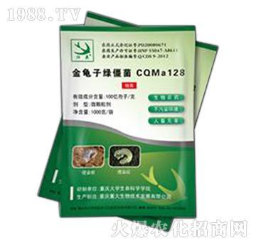 金龟子绿僵菌CQMa128-归燕牌-重大生物