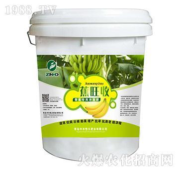 蕉旺收-香蕉专用冲施肥