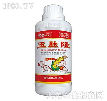 玉米专用叶面肥-玉肽隆