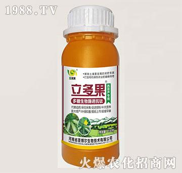 西葫芦专用叶面肥-多糖生物酶诱抗肽-立多果-圣博尔