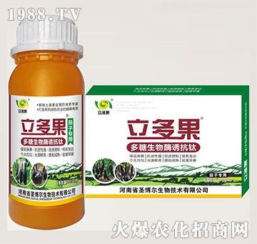 茄子专用叶面肥-多糖生物酶诱抗肽-立多果-圣博尔