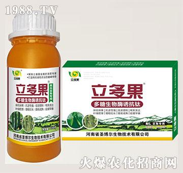 黄瓜豆角专用叶面肥-多糖生物酶诱抗肽-立多果-圣博尔