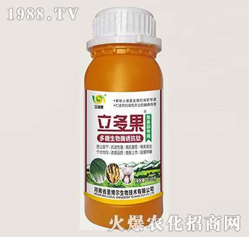 葱姜蒜专用叶面肥-多糖生物酶诱抗肽-立多果-圣博尔