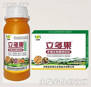 根茎块专用叶面肥-多糖生物酶诱抗肽-立多果-圣博尔