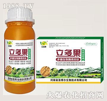 叶菜专用叶面肥-多糖生物酶诱抗肽-立多果-圣博尔