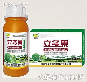 韭菜专用叶面肥-多糖生物酶诱抗肽-立多果-圣博尔