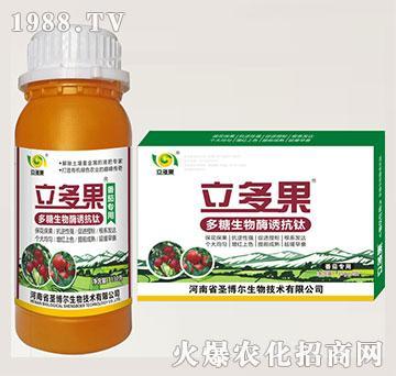 番茄专用叶面肥-多糖生物酶诱抗肽-立多果-圣博尔