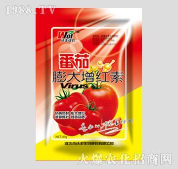 番茄膨大增红素-绿九洲