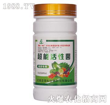 蔬菜专用超能活性菌-华