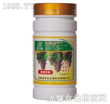 葡萄专用超能活性菌-华