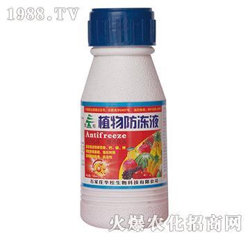100ml植物防冻液-