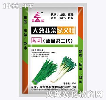 大葱韭菜绿又壮第二代-