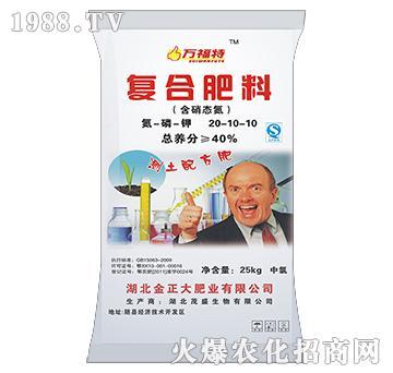 含硝态氮复合肥料20-