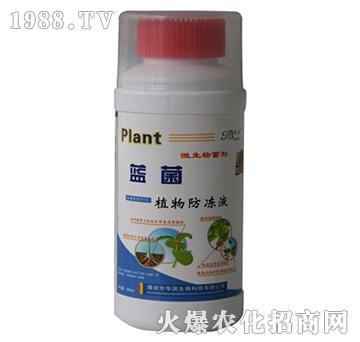 200ml植物防冻液-华滨