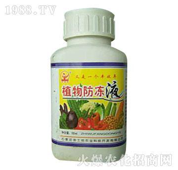 植物防冻液(瓶)-金土地