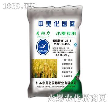 麦动力15-22-8-小麦专用-益生源