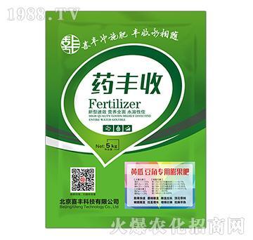 黄瓜豆角专用膨果肥-药