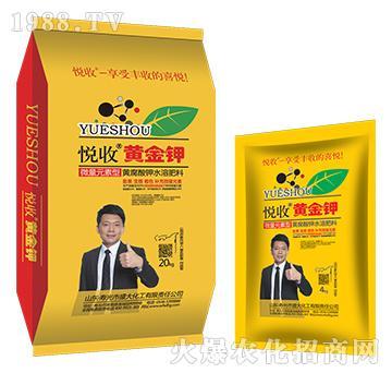 悦收黄金钾-黄腐酸钾水溶肥-盛大