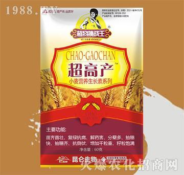 小麦超高产-昆仑生物
