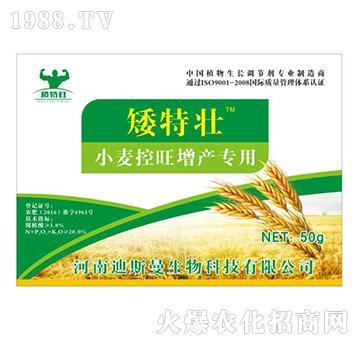 小麦控旺增产专用(袋装)-矮特壮-迪斯曼