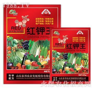 红钾王-泰邦